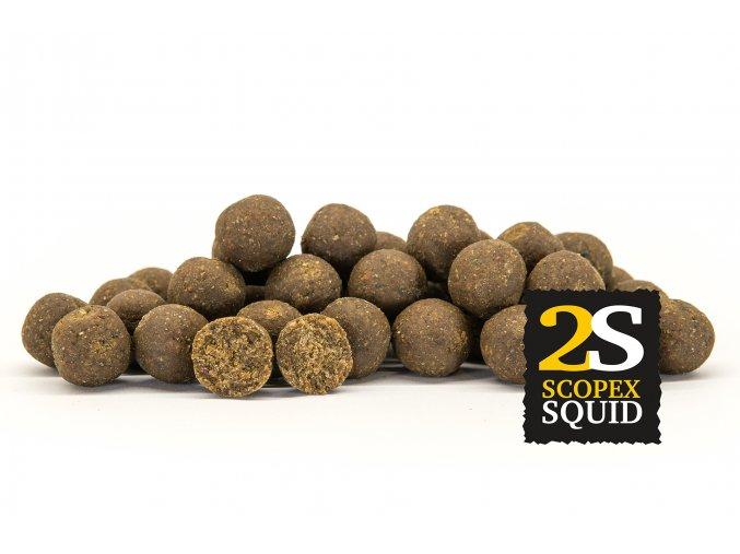 2S ScopexSquid OK